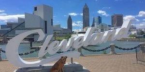 seo Cleveland